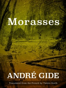 Morasses by Andre Gide trans. Tadzio Koelb